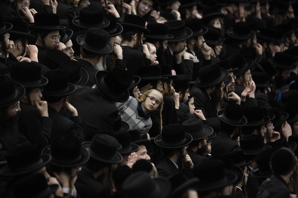 afp. hét képei - 2016.01.25. Jeruzsálem, Izrael, Ultra-Orthodox Jews of the Belz Hasidim take part in the celebration of the Jewish feast of Tu Bishvat (or Tree New Year) on January 25, 2016 in Jerusalem.
