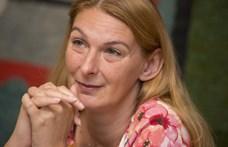 Így került egy platformra a Fidesz és a Momentum Baranyi Krisztinával szemben – videó