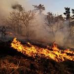 A tüzet eloltották, de az indulatok még parázslanak Budaörsön
