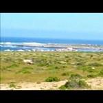 Videó: virágba borult az Atacama-sivatag