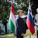 Jéghegy felé haladunk és az étlapon vitatkozunk – írta a szlovén miniszterelnök