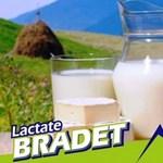 A román juhsajt európai balhéja a románok szerint nem is úgy van