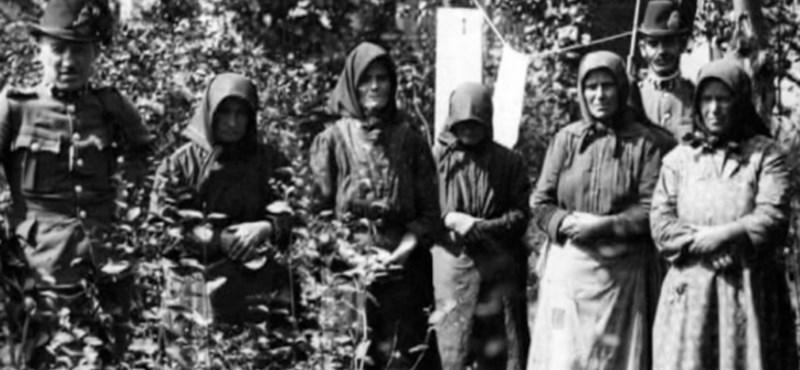 Ezért öltek a tiszazugi asszonyok: a női gyilkosok pszichológiája