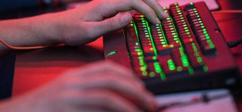 Elhúzódó informatikushiányra készülnek a cégek, kapkodnak a szakemberek után