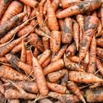 Rendőrségi zöldségszembesítés: ez a te ellopott sárgarépád?
