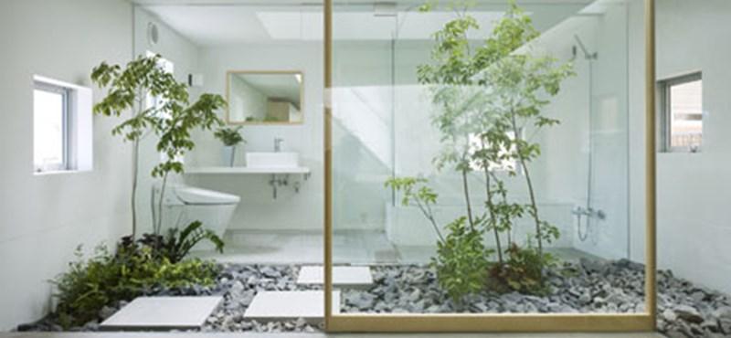 Japán házak: zöldkertek a lépcsőfordulóban