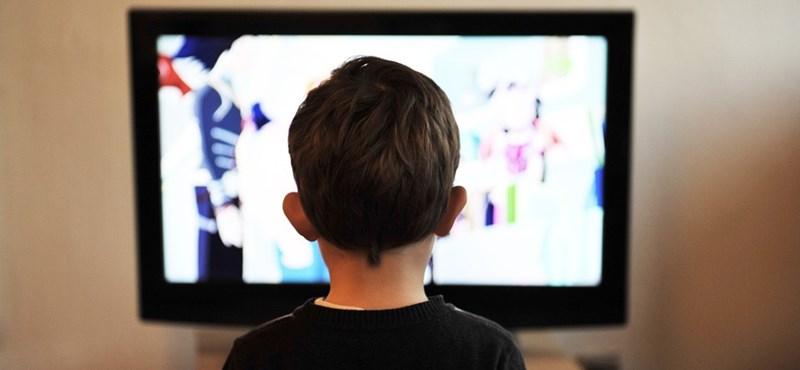 Alsós diákoknak is lesz oktató műsor a TV-ben