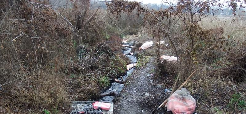 Szűkíteni tudták a rendőrök a szigetszentmiklósi szennyezés esetleges elkövetőinek körét