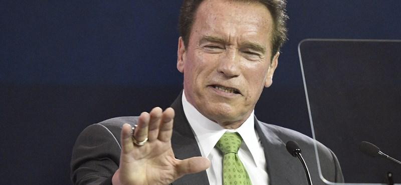 Schwarzenegger is csatlakozott Törőcsik Mari alapítványához