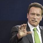 Schwarzenegger szerint Trump bolond