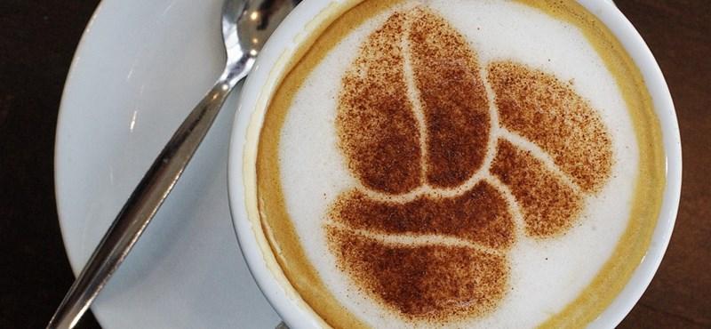 Ennyit jelent napi 2-4 csésze kávé
