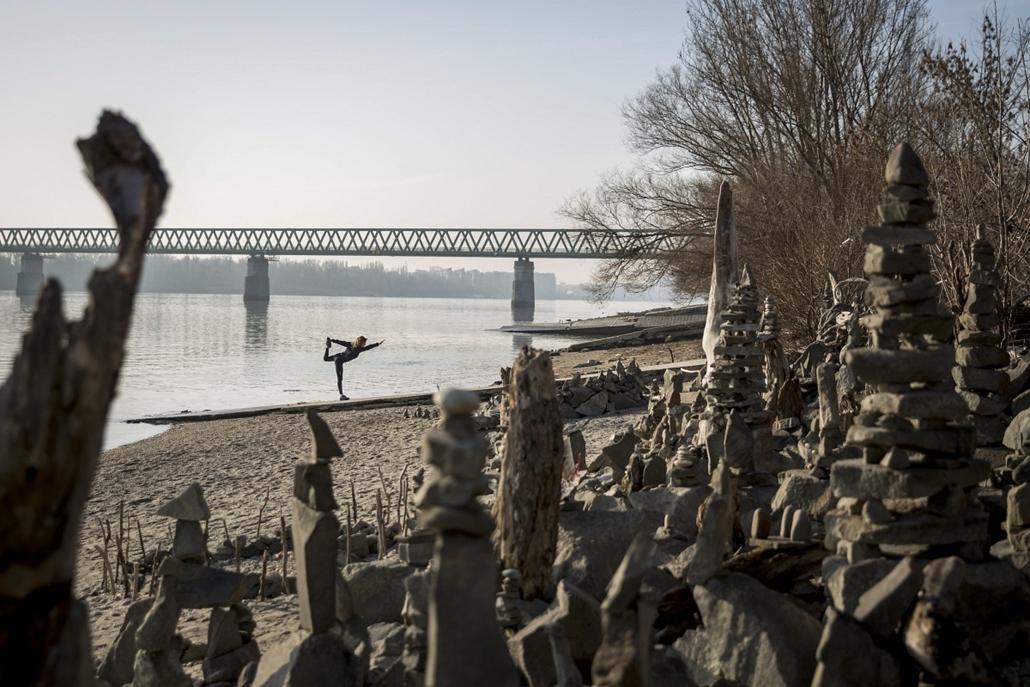 mti. Kőszobrok a Római-parton, Budapest 2014.02.26.