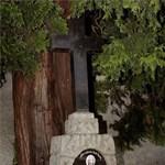 Felszántották Hitler szüleinek sírját Ausztriában