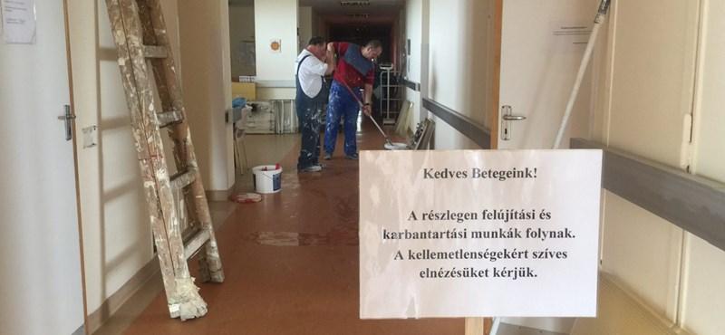 Patyomkin: A Jahn Ferenc Kórházba küldtek két jól fényképezhető festőt
