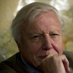 90 éve Sir David Attenborough, a természetfilmek legendás alakja