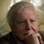 Nagyon mellélőtt Sir David Attenborough?