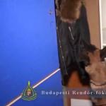 Megint kutyákkal razziáztak a bulinegyedben a hétvégén