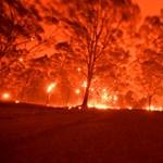 Ausztrália tűztengerben – Apokalipszis most és mindörökké?