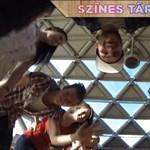 Ingyenes nyári tábort szervez a Corvinus érettségi-előkészítője