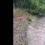 Videó: Ömlött a szennyvíz a Ráckevei Dunába
