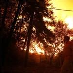 Második világháborús lőszerek robbantak a potsdami erdőtűzben