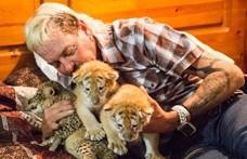 A világ legfurább tigrisidomárja a börtönből üzent: rákja miatt kér kegyelmet