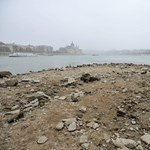 Megsínyli a gazdaság a Duna alacsony vízállását