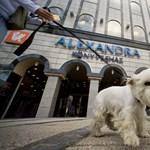 Kiadók vehetik át az Alexandra-boltokat