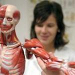 A frissen végzett orvosok fele nem kezdte el a szakorvosképzést