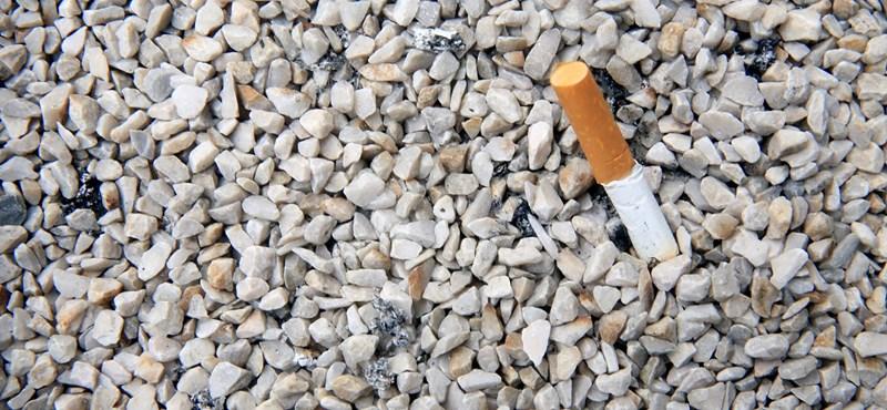 Lelakott otthon, dohányzó gyerekek, iskolakerülés – lesújtó értékelés az ombudsmantól