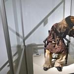 Fotó: Bemutatták a múmiaként őrzött magyar kisfiút