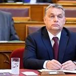 Egyetemi tanár segít eligazodni Orbánnak CEU-ügyben
