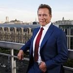 Charlottesville: Schwarzenegger üzent a neonáciknak és Trumpnak is