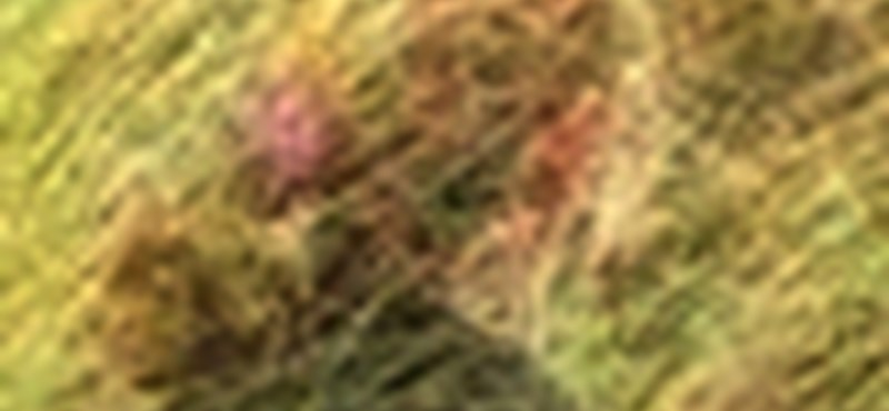 Photoshop: készítsünk láthatatlan embert!