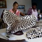 Állatvédők lettek a zuluk - Nagyítás-fotógaléria