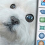Készítsen mókás fotókat, ingyenes teljes verziós programmal