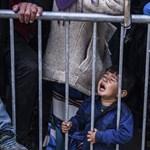 Nagyjából ezer menekült kapott piros lámpát Szerbia előtt