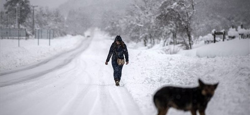 Frissítő fotók a chilei havazásról