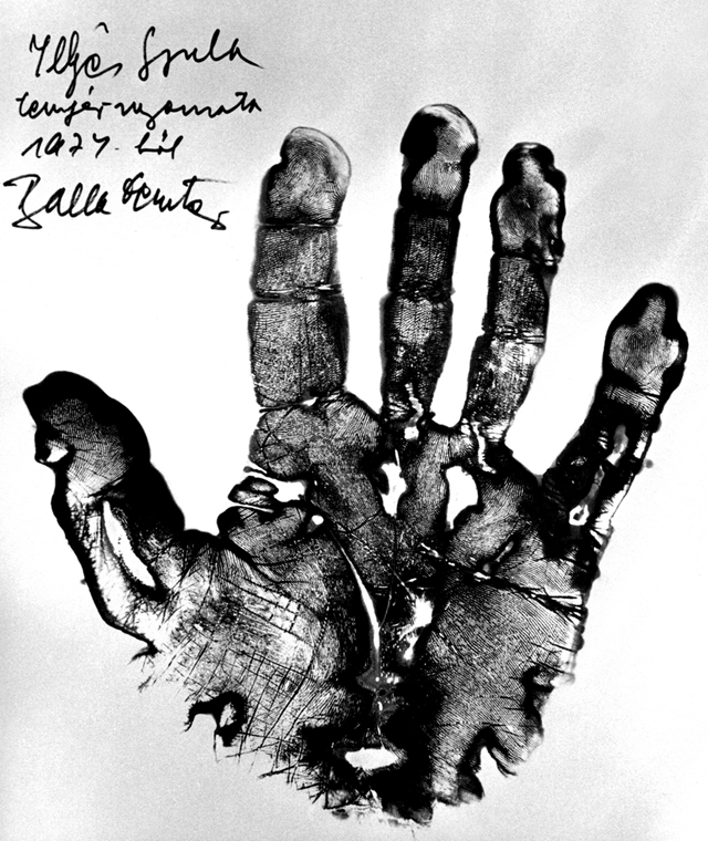 Illyés Gyula tenyérnyomata 1977