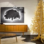 Alternatív karácsonyfák: 3 különleges fenyő a tengerentúlról