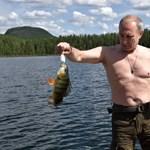 Piketty: Ha a Nyugat tényleg meg akarja csípni Putyint, akkor itt kellene lecsapnia