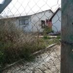 A levágott disznófül is asztalra került a tiszaföldvári lakossági fórumon