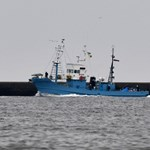 Sokkal veszélyesebbek a bálnákra a halászhálók, mint azt eddig gondolták