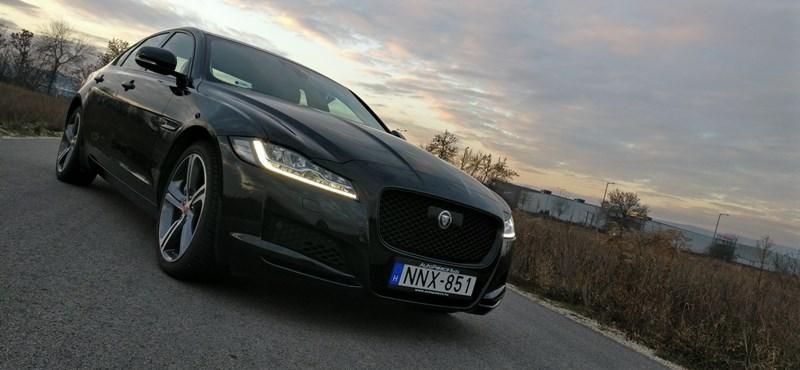 Vadmacskát szelídítettünk – teszten a Jaguar XF