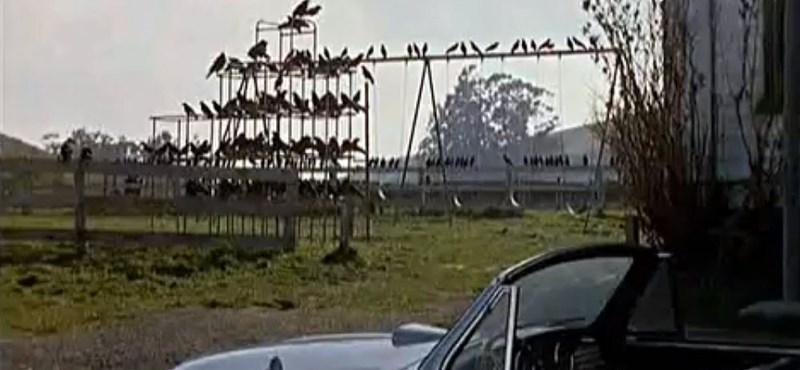 Hitchcocki jelenetek egy autópályán