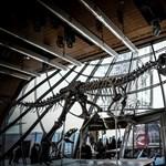 Hatalmas húsevő dinoszaurusz maradványaira bukkantak az Alpokban