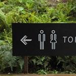 Könnyebben értelmezhetőek mostantól a japán vécék