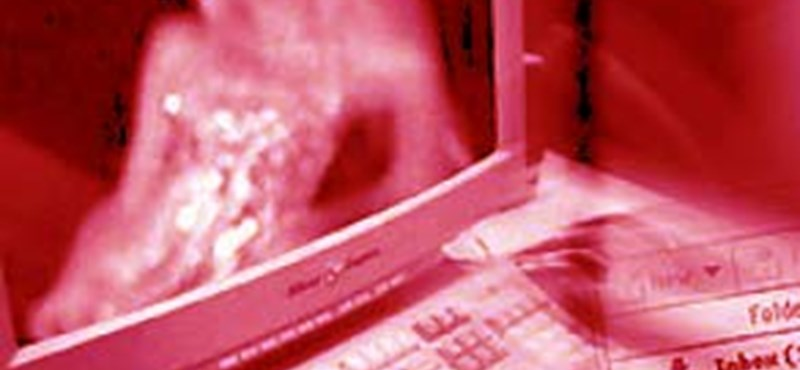 Pornóoldalakat nézegetnek tanórákon a diákok Kárpátalján