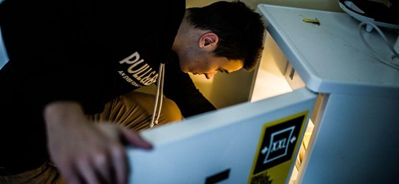 Negatív rekord dőlt: csak egy órán át lehetett pályázni a hűtőgépcserére