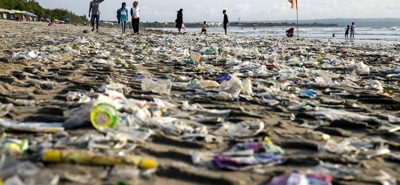 A PET-palackok árával próbál környezettudatosságra nevelni a francia kormány